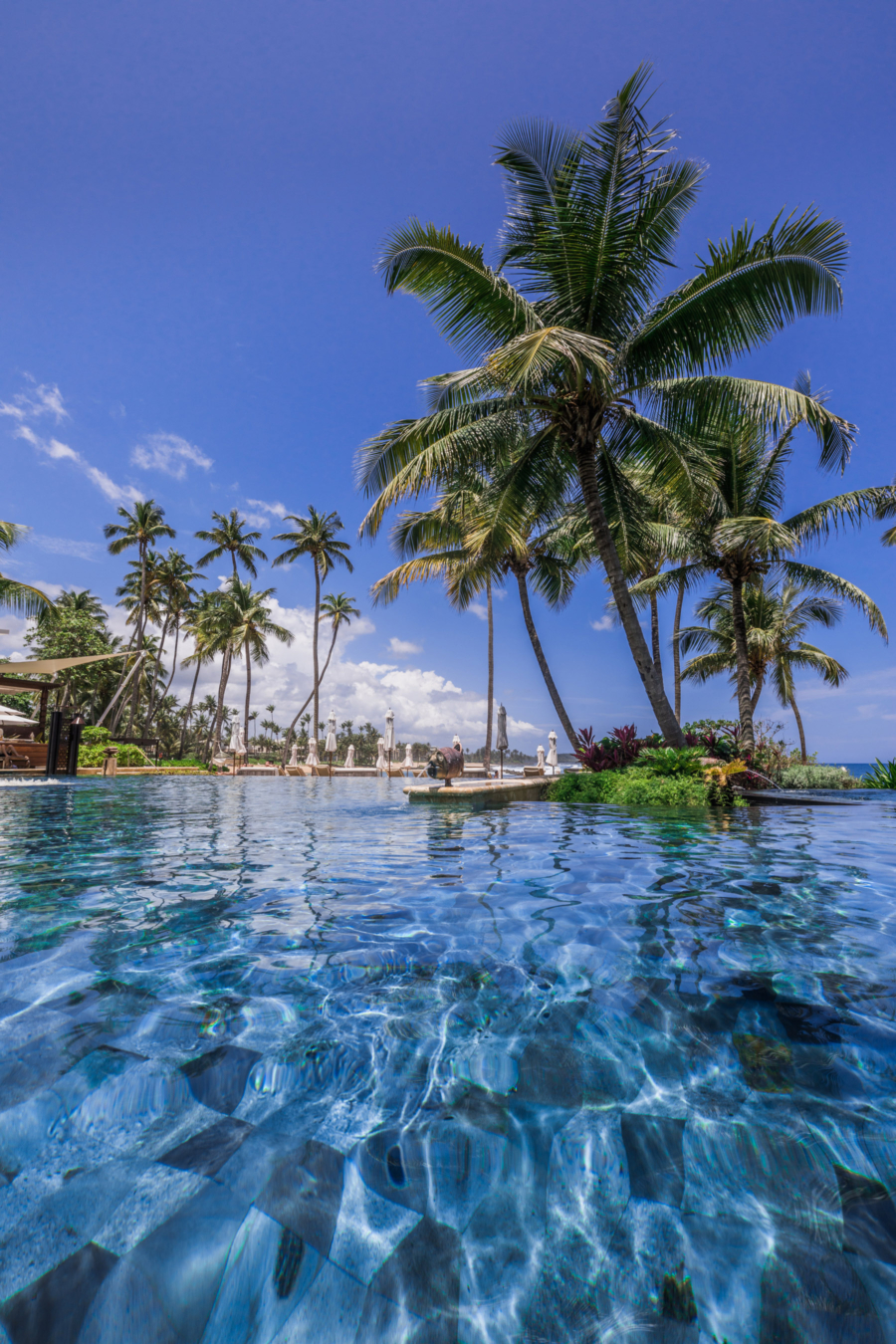 Private Pool Ritz Carlton Dorado Beach Discover Puerto Ricos Best