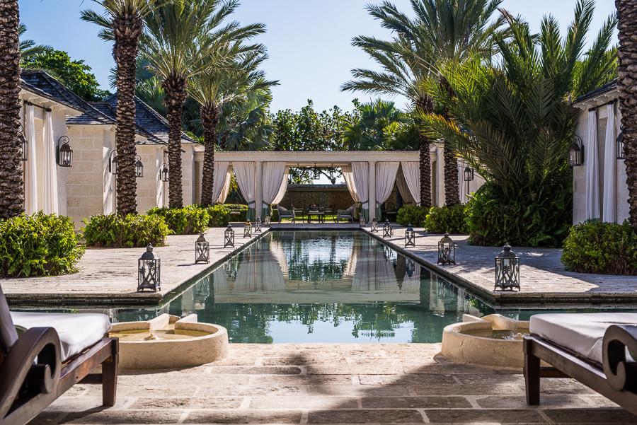 Regent Palms