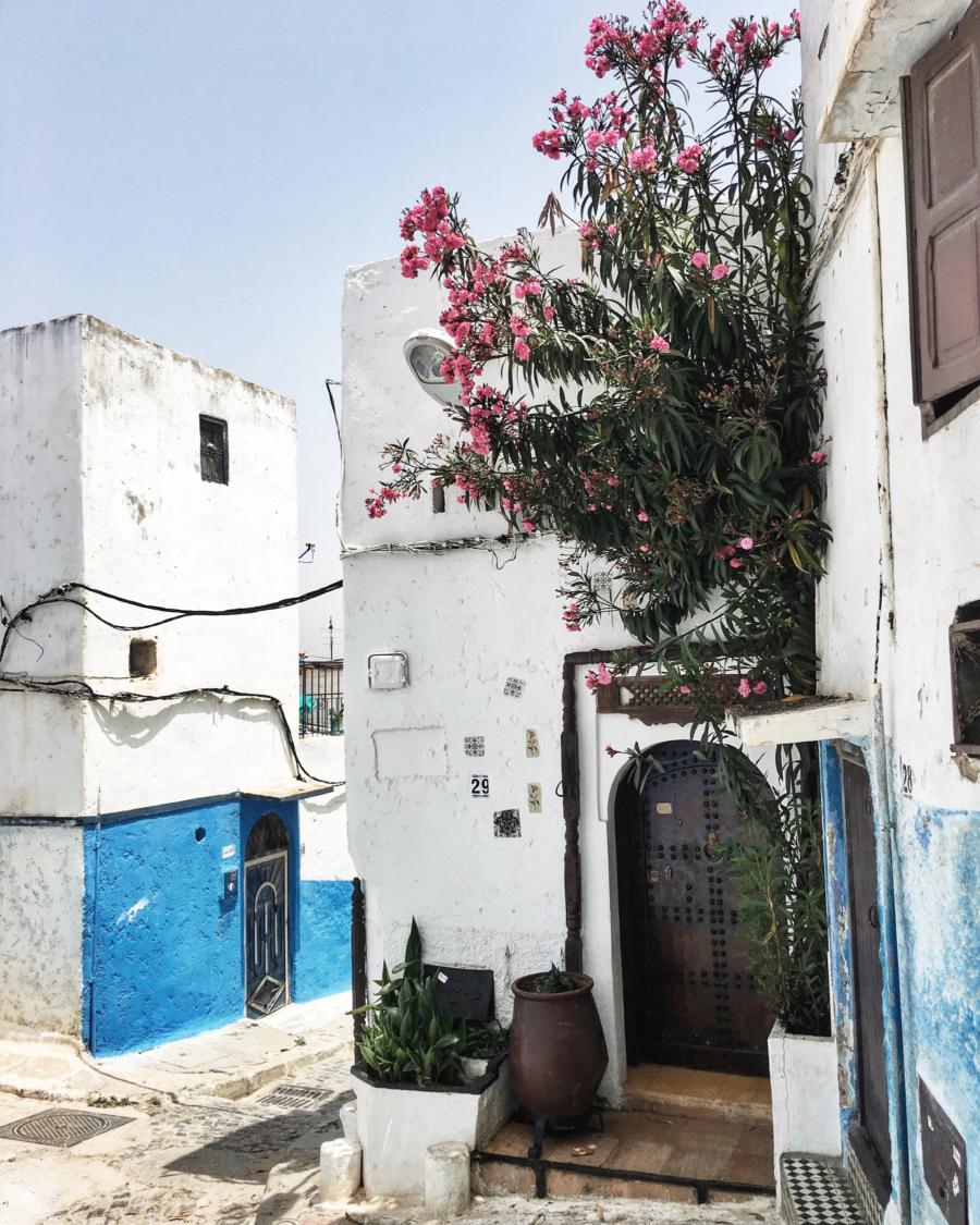 Four Seasons, Resort, Casablanca, Marrakesh, Morocco, NOTJESSFASHION, NYC, Top Fashion Blogger, Lifestyle Blogger, Travel Blogger
