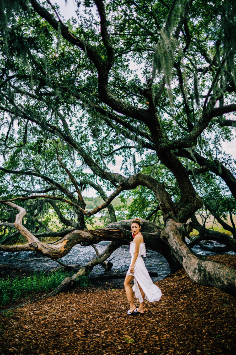 Boone's Plantation - Travel Guide: 36 hours in Charleston, SC // NotJessFashion.com