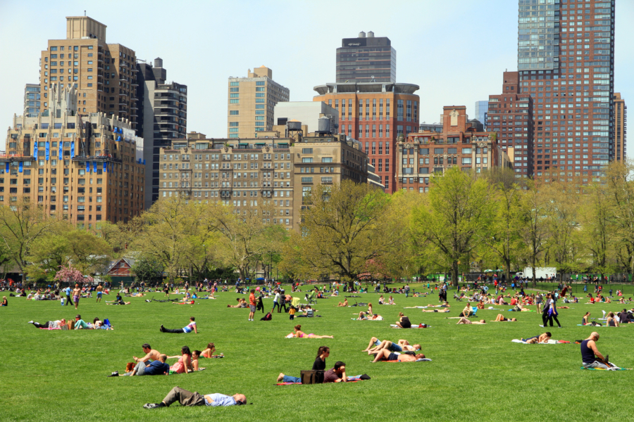 Sheep Meadow Central Park Picnic - 10 Things You Must Do In New York This Summer // NotJessFashion.com