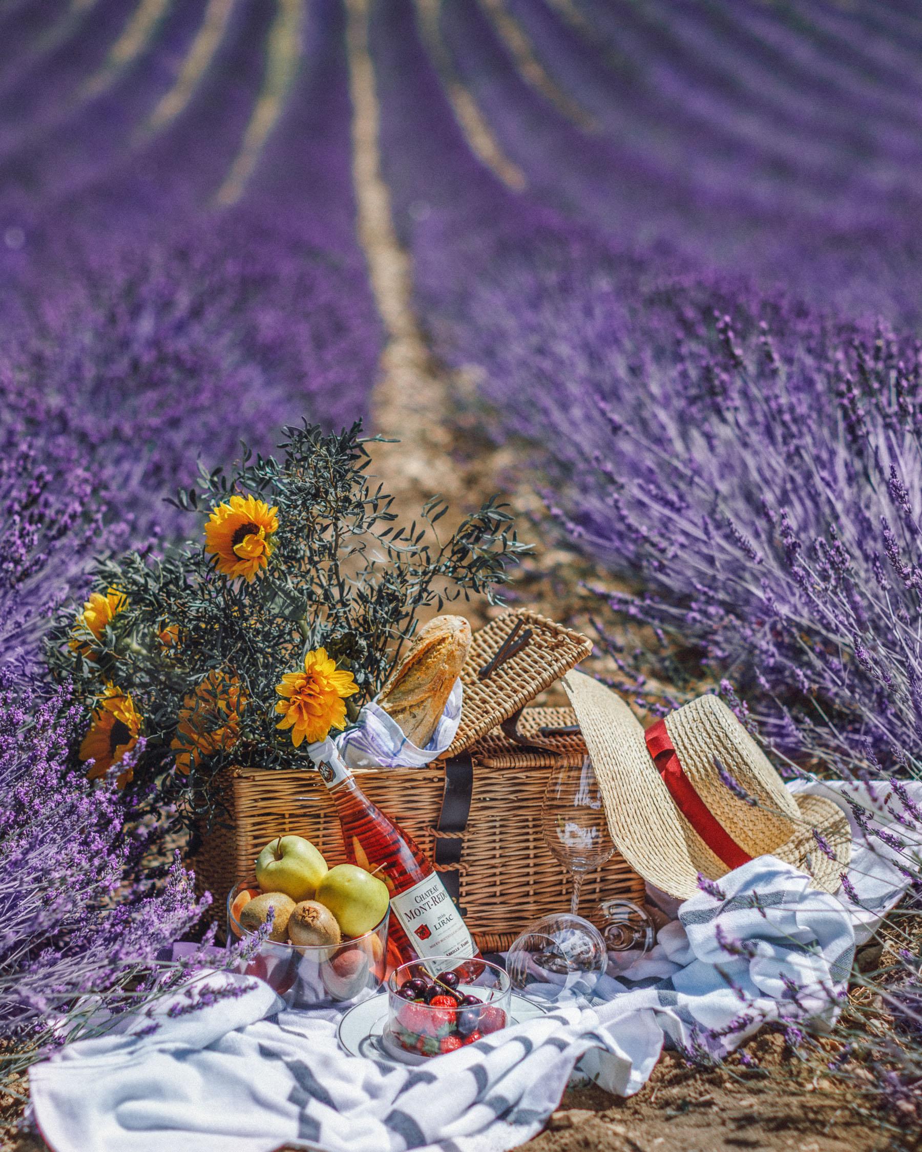best flower fields of instagram, Lavender Fields in Provence // Notjessfashion.com