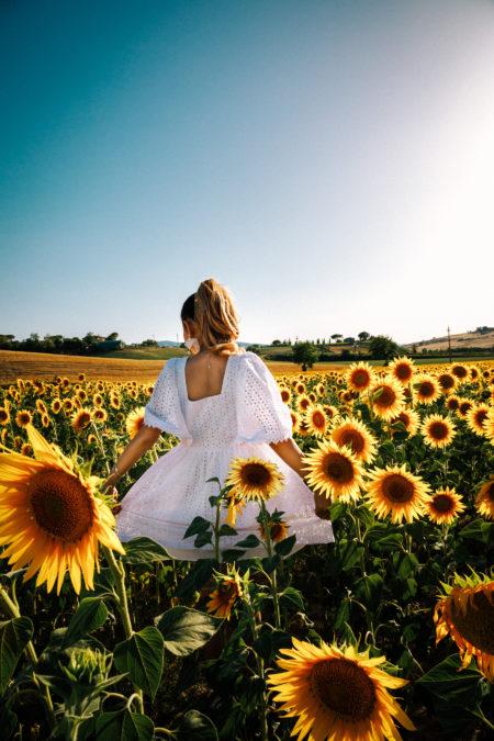 sunflower field, sunflower portraits // NotJessFashion.com