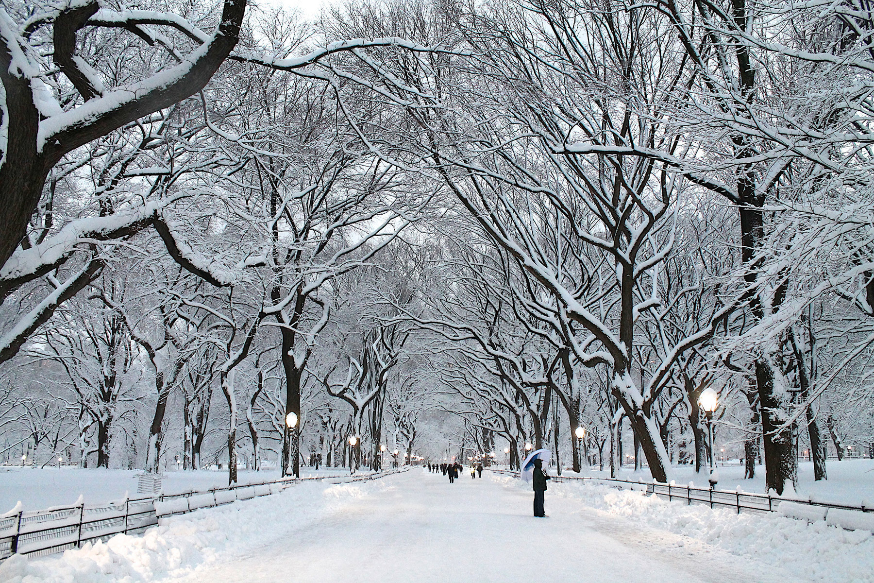 Places for Great Snow Photos - Central Park in the Winter // Notjessfashion.com