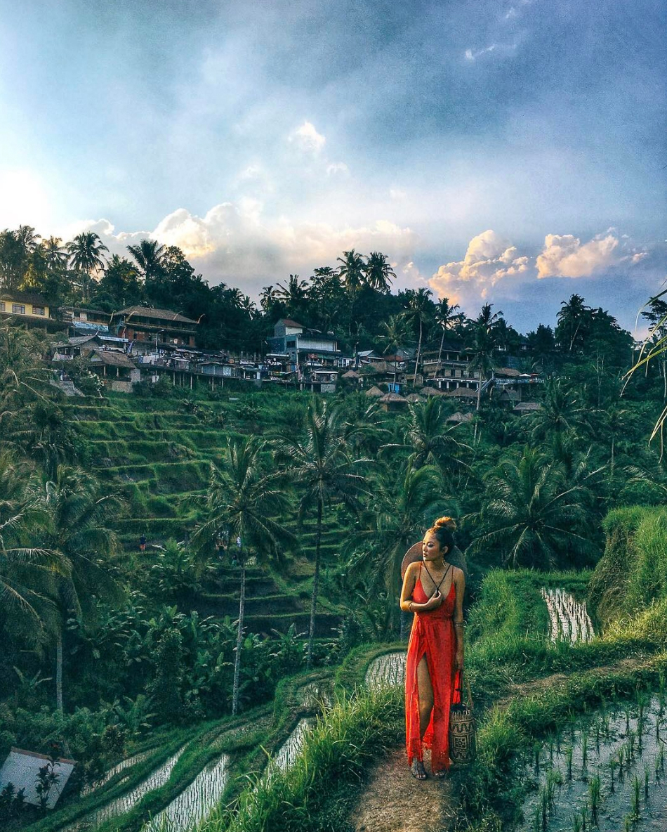 Essential Photography Tips for New Bloggers - Jessica Wang goes to Indonesia // NotJessFashion.com // jessica wang, new york fashion blogger, Tegallalang Rice Field Terrace, travel blogger, indonesia rice field, travel and fashion, stylish travel