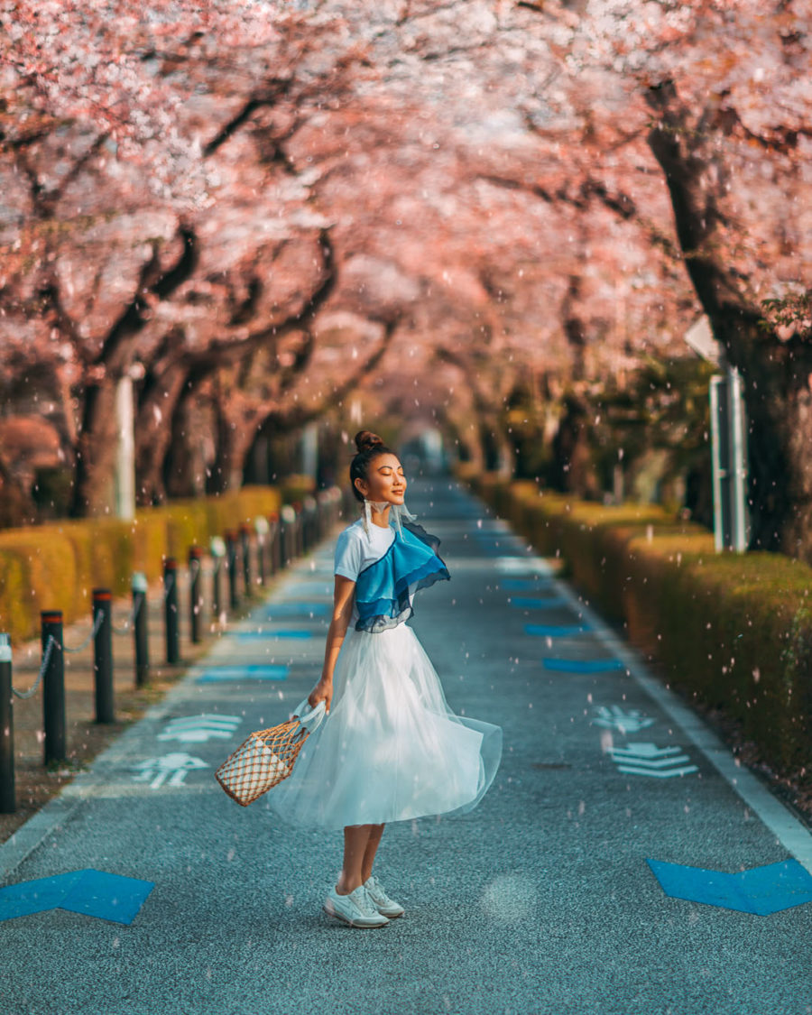 Best Spring Vacation Ideas & Getaways - Tokyo Cherry Blossoms, luxury travel blogger // Notjessfashion.com