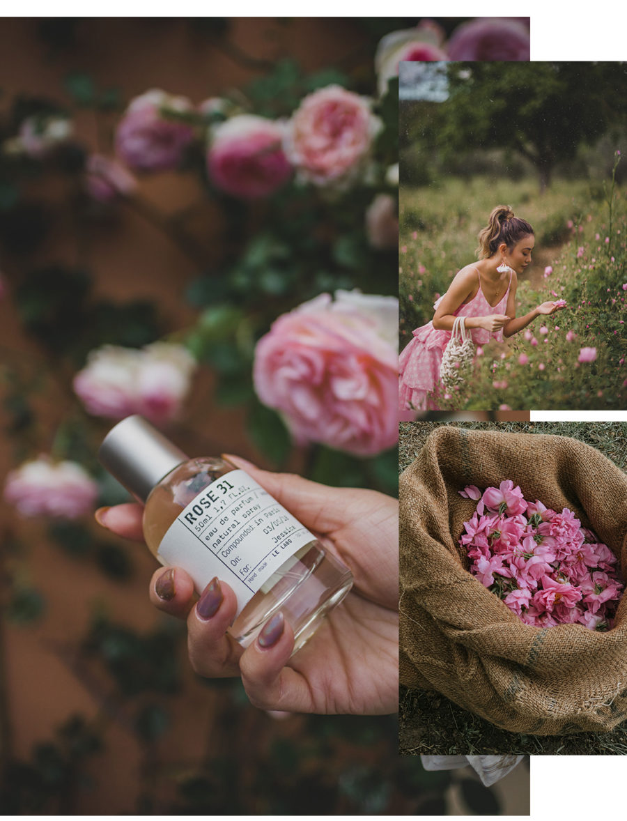 Fairmont x Le Labo Grasse Rose Harvest Experience - tiered dress and sneakers, pink tiered ruffle dress, dress and sneakers outfit, grasse rose field, le labo rose field, le labo blogger experience, le labo rose 31 fragrance, rose perfume // Notjessfashion.com