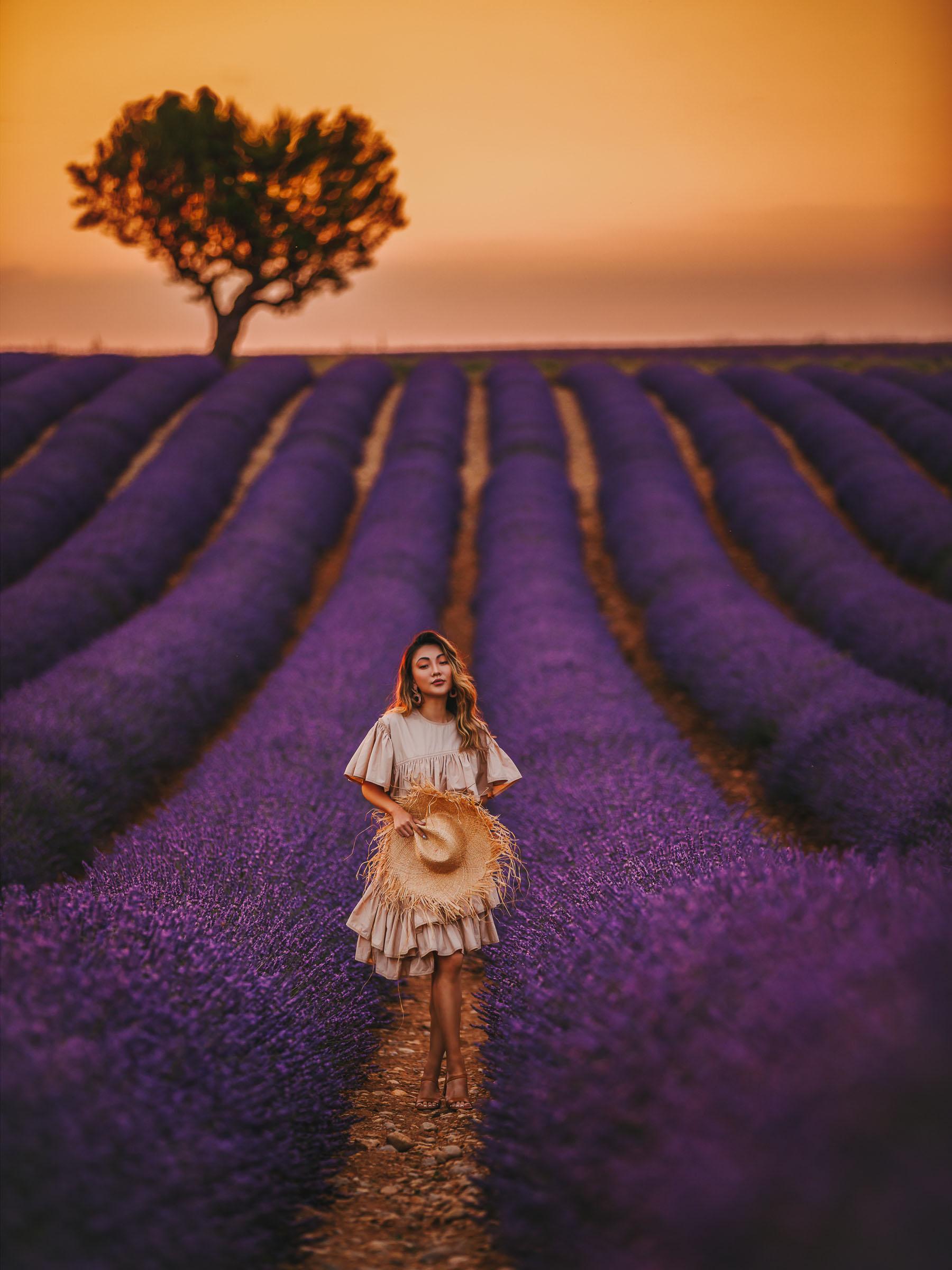 Lavender Fields Provence, Fashion and Travel Blogger, Phillip Lim flamenco dress // Notjessfashion.com