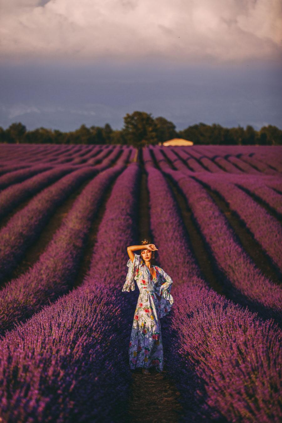 Lavender Fields of Provence // Notjessfashion.com